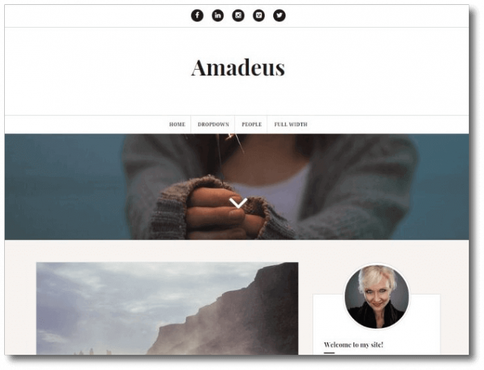 Amadeus-WordPress-Theme-e1452629524816