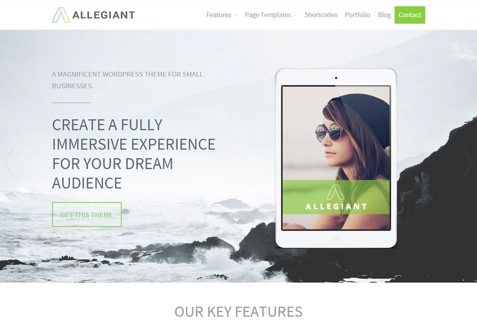allegiant-wordpress-theme