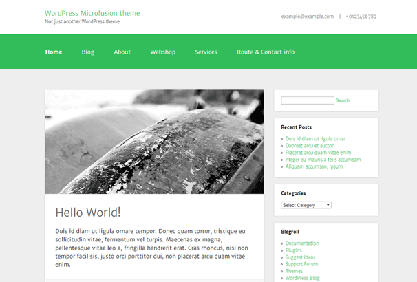 Microfusion Free WP Theme